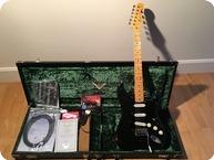 Fender Stratocaster David Gilmour Relic 2008 Black