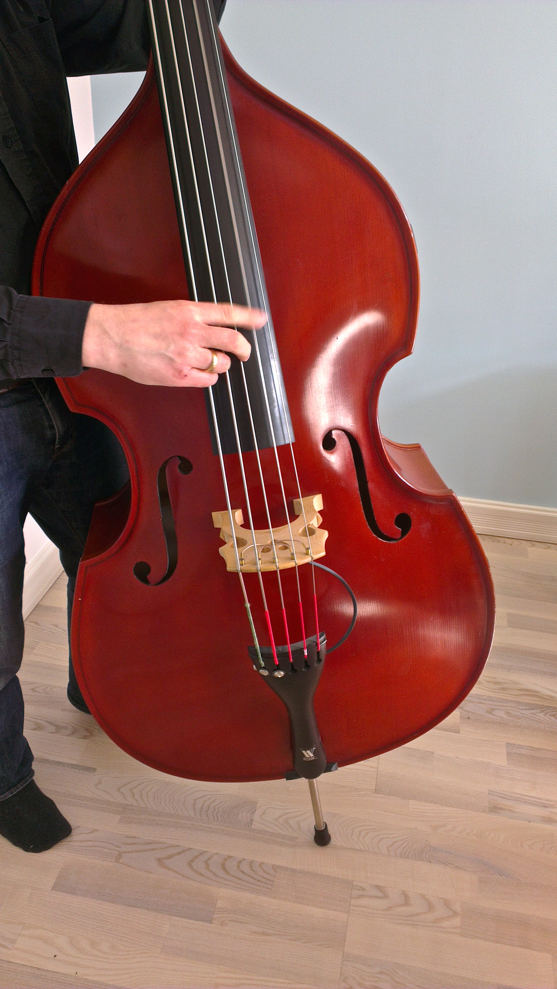 gunnar damsgaard 5 string 3 4 double bass 1995 bass for sale. Black Bedroom Furniture Sets. Home Design Ideas