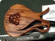 PARADIS Paradis Nylon Strings With POLYSUBBASS 1993 Natural