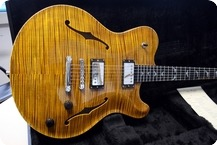 Nik Huber Guitars Rietbergen Proto Run LTD 2012 Double Stained Amber