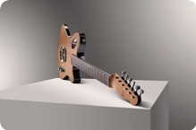 Tao Guitars El Mirage 2013