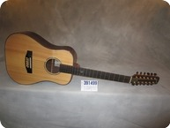 Leach 78th Sized Dreadnought 12 string 1999