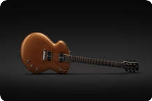 Tao Guitars Disco Volante 2013