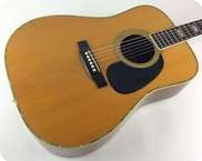 Martin D 41 1975 Natural