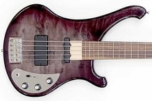 Schloff Guitars Rocktyfier 5 String 2010 Black Shadow