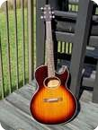 Washburn Woodstock Custom Shop Acoustic Electric 1990