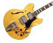 Hoyer 335 1973