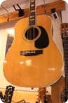 Martin D 45 1979