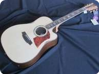 Cole Clark Guitars FL 3 AC