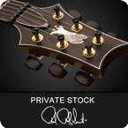 PRS Private Stock P24 Signature Koa Top Rosewood Neck 4113