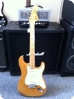 Fender Stratocaster 1977 Nature
