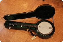 Deering 5 String Banjo Sierra Electric 
