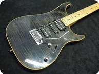 Vigier Excalibur Clear Black