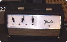 Fender Echo Reverb ECHO UNIT Tel Ray 1968