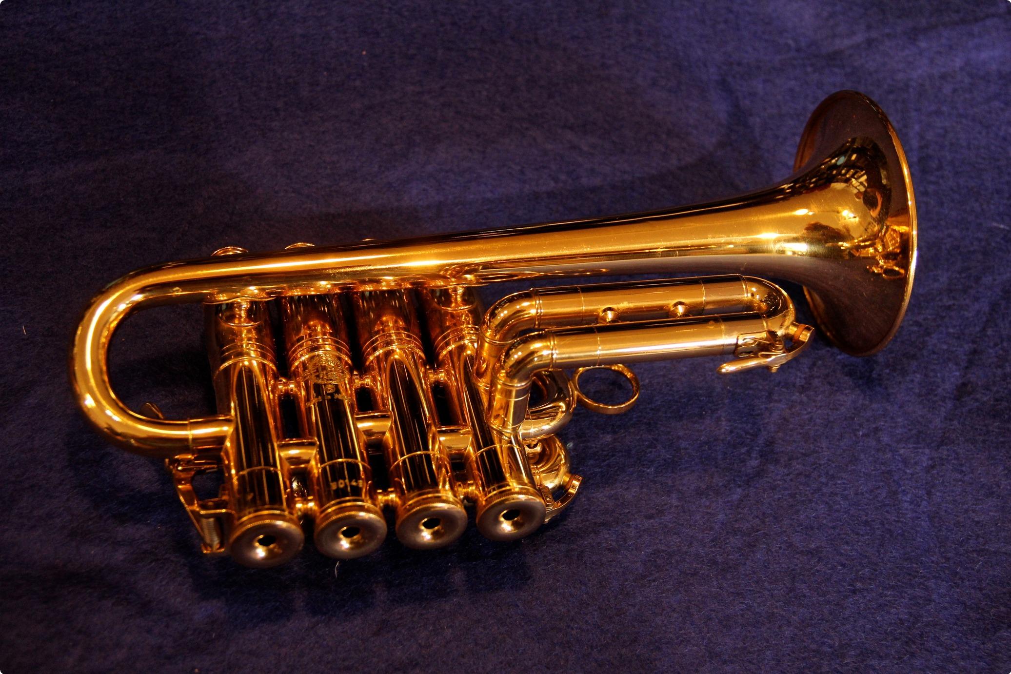 selmer model 365 piccolo trumpet bb a. Black Bedroom Furniture Sets. Home Design Ideas