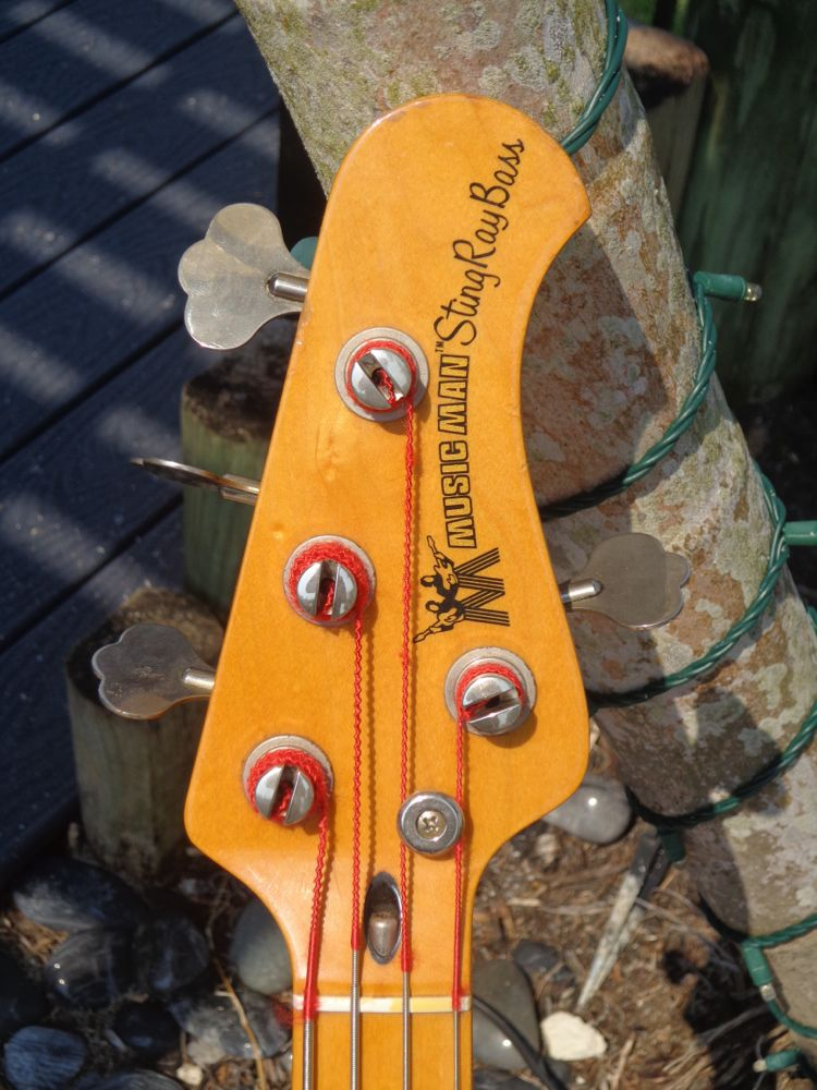musicman stingray bass 1977 walnut bass for sale guitarbroker. Black Bedroom Furniture Sets. Home Design Ideas