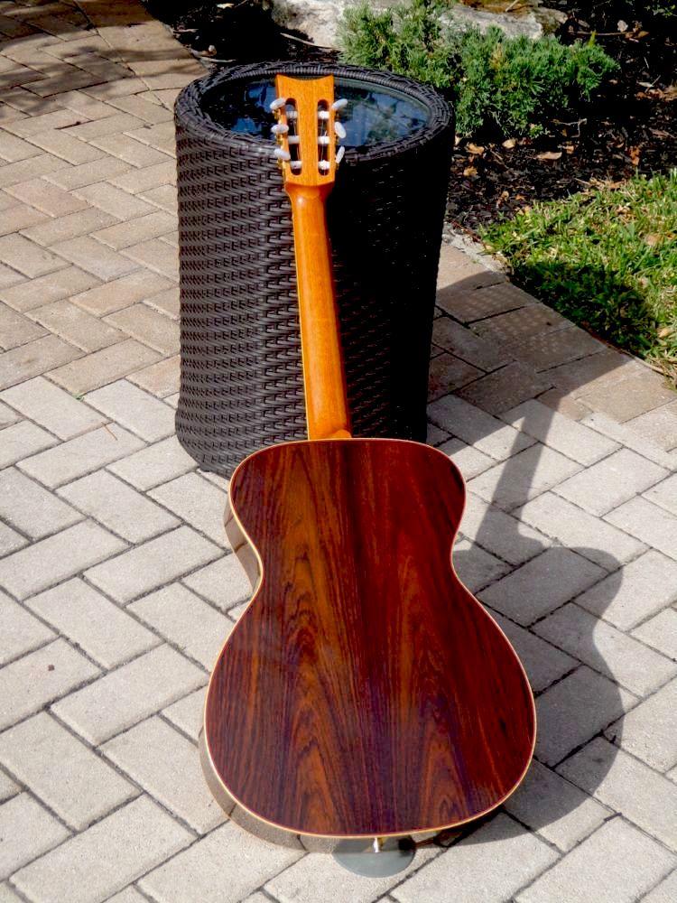 C Fox Guitar For Sale Cfox Concert Sierra Nylon