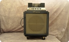 Ampeg B15NF 1965 Blue Checked Tolex