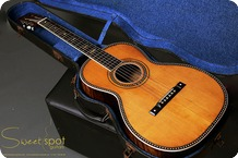 Lyon Healy 1920 Lyon Healey Conservatory Aquilla Parlour Acoustic Vintage Acoustic Guitar 1920 Clear