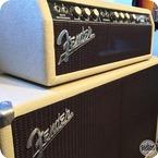 Fender Bassman Amp 1963 Refin