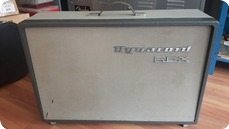Dynacord Rex Amp 1965 Two Tone Grey