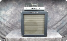 Ampeg SB12 1966 Blue Checked Tolex