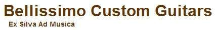 Bellissimo Custom Guitars
