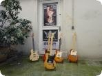 Blues Guitars France | 1