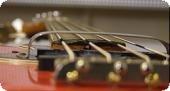 Pauls Bass Matters | 2