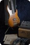 Roland G33GR33B 1980 Wood