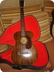 Gretsch Burl Ives Junior 1960