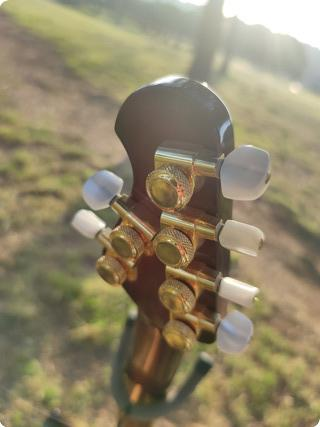 Ernie Ball Music Man Jp6 2020  Island Burst Koa