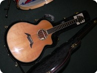 Breedlove Master Class J 25 Custom Striped Ebony 2008 Natural