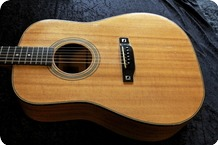 JJGuitars JJ Dreadnought Made To Order