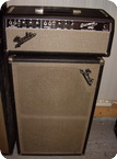 Fender Bassman 1965 Black Face
