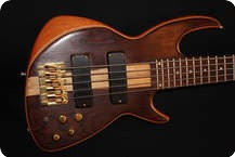 Chris Larkin RIO ROSEWOOD 5 STRING