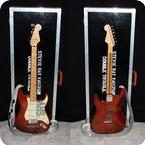 Visual Clone Guitars Stevies Lenny 2010 Custom Brown