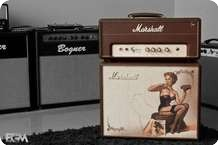Marshall C5 Custom Pin Up 2013 Brown