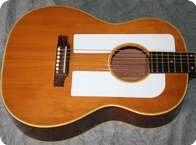 Gibson F 25 Folksinger 1963 Natural