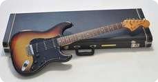 Fender Standard Stratocaster 1977 1977