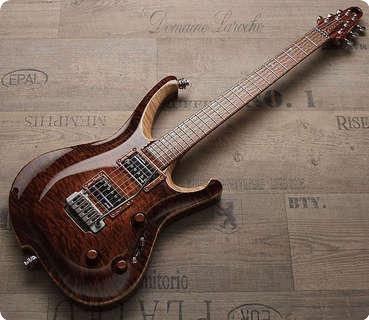 Zerberus Guitars Nemesis #002 2013