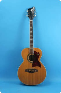National Acoustic 1968 Natural