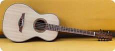Rob Van Leuven Parlour Bouzouki Made To Order 2014