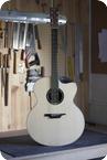 Luis Guerrero Guitars J Series Cutaway 2014