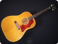 Gibson J50 1967 Natural