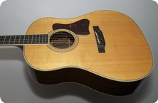 Collings CJ 2004