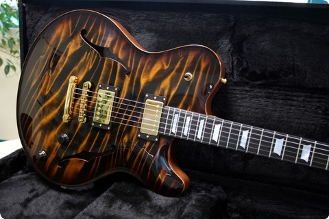 Nik Huber Guitars Rietbergen  Tiger Eye