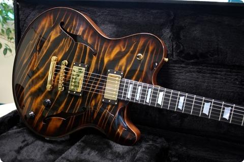 Nik Huber Guitars Rietbergen  Tiger Eye