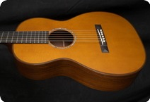 C. F. Martin MARTIN CUSTOM SHOP 02840 LIMITED EDITION AMAZON ROSEWOOD