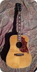 Gibson Hummingbird 1976 Natural